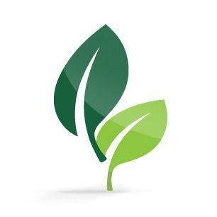 Trex eco-friendly